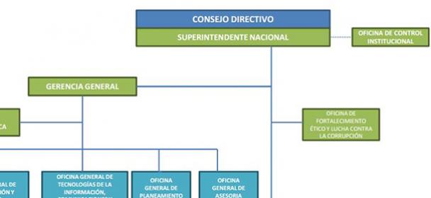 Estructura superintendencia nacional de migraciones for Ministerio del interior migraciones peru